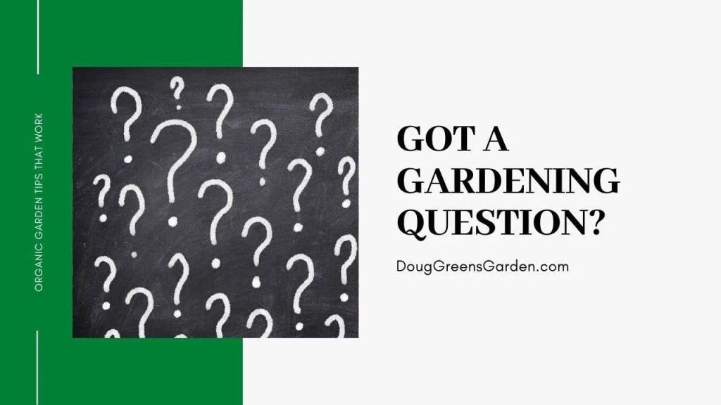 gardening question
