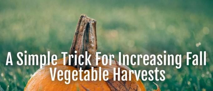 increase-fall-vegetable