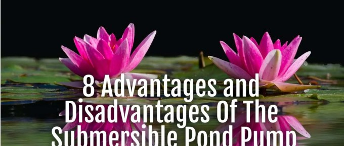 submersible pond pump