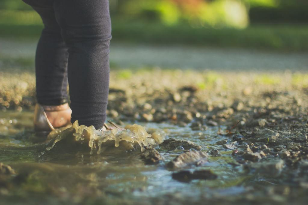 water-borne disease outbreak