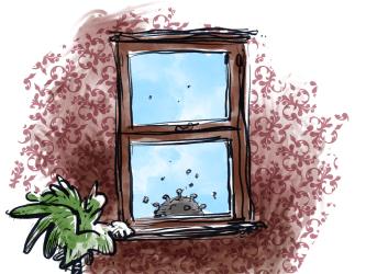 Cartoon Window 1