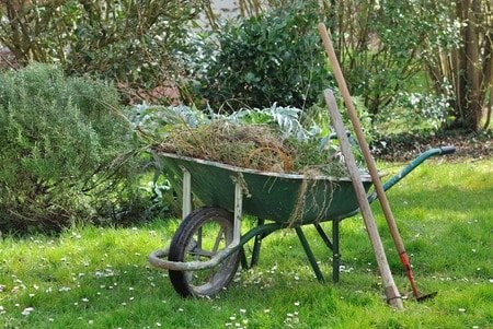 56352795 - wheelbarrow full with garden weeds and tools in a garden