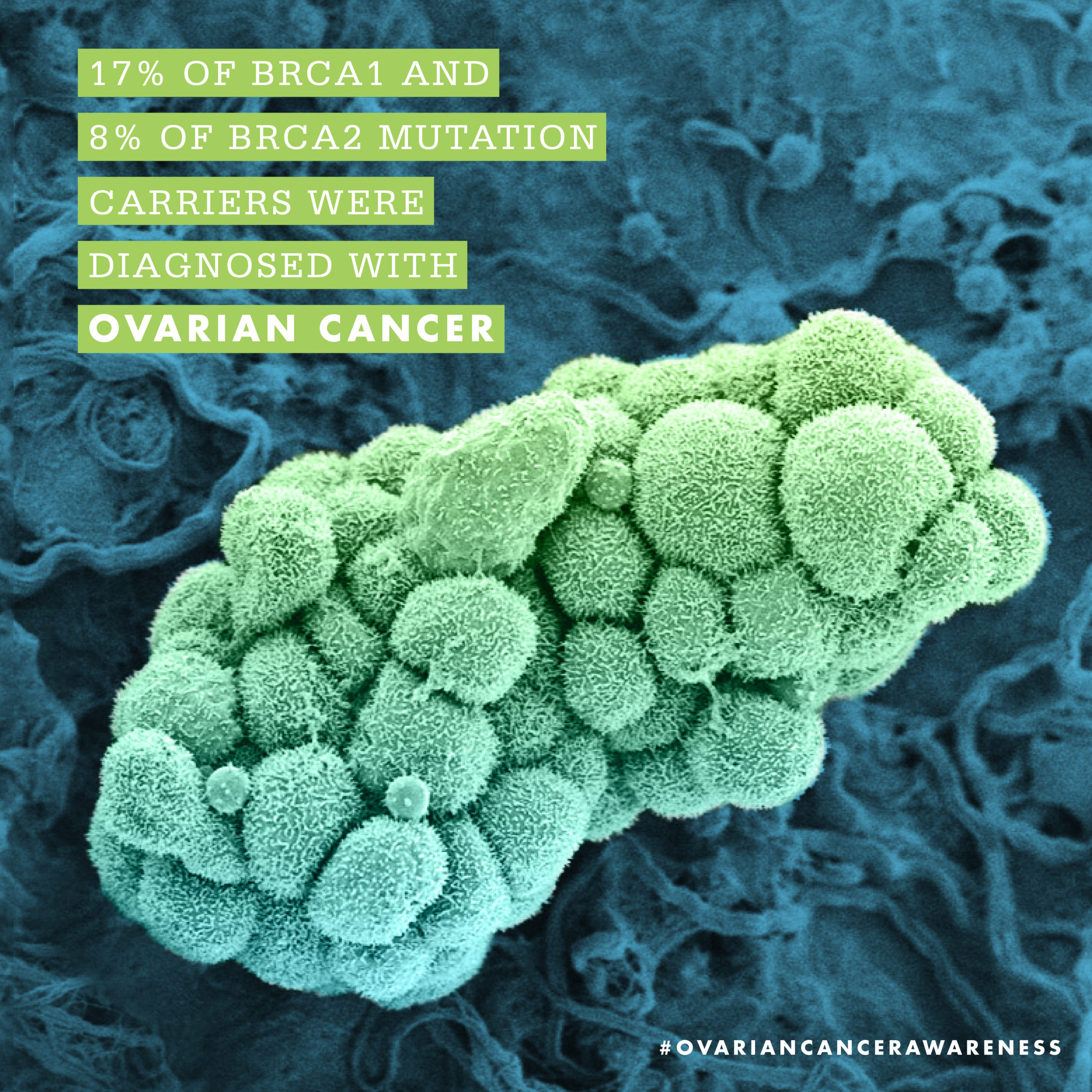 Social-September-OvarianCancer