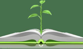 Surveying the Text: Jeremiah