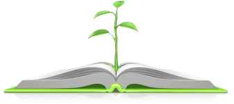 Plant From Bible