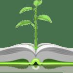 Women: Themes in Proverbs III