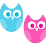 doulawise owls logo