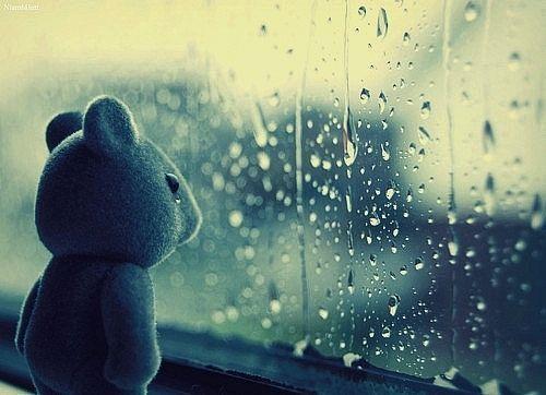 Image result for sad teddy bear