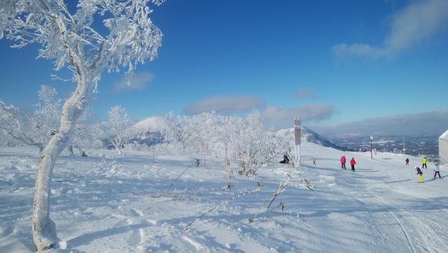 北海道 家族 スキー旅行