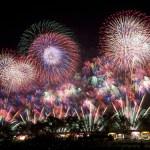 立川 昭和記念公園花火大会