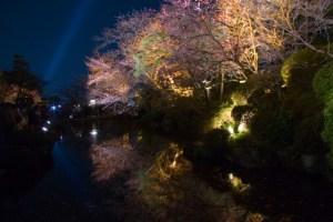 京都春のライトアップ 清水寺