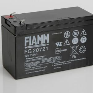 Fiamm UPS Battery