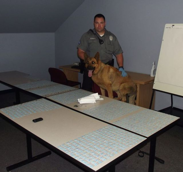 Officer Barrett and K9 partner Britt stand with the heroin seized