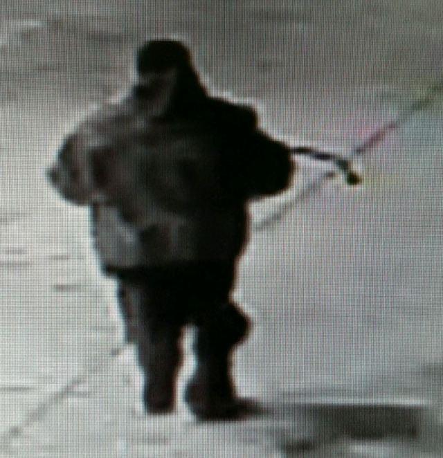 Surveillance image of the suspect