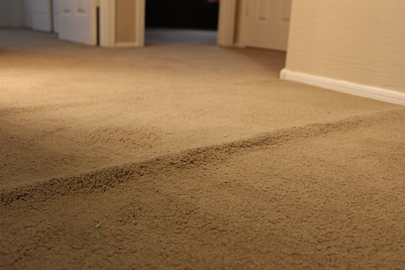How to Prevent Buckled Carpeting  Dover RugDover Rug