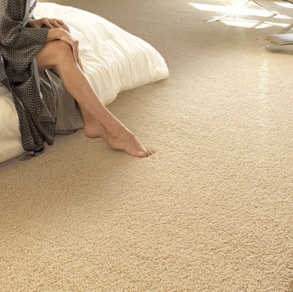 Bedroom Carpets For Sale
