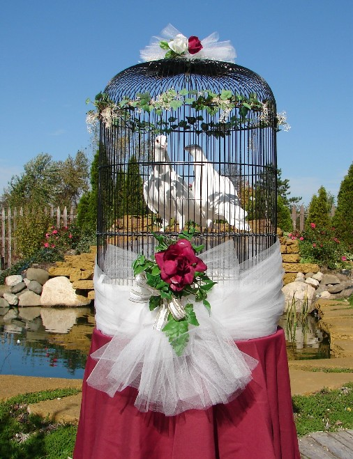 wedding chair covers for bride and groom ergonomic under 200 of lansing: dove releases