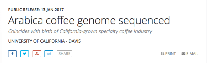 Coffee Genome Assembly