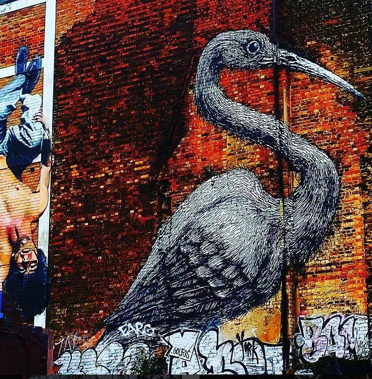 Graffiti artist: ROA