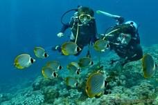 Potápìní s dìtmi na Bali v Tulambenu