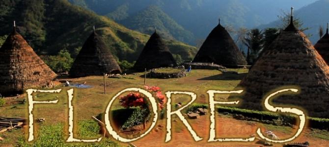 Flores ostrov sopek i tajemných rituálů
