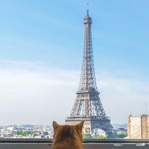 Ayumi and Eiffel Tower