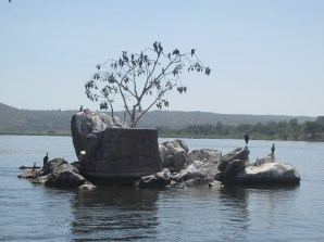 Pilings from the Bujagali Power Station diversion
