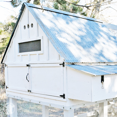 Farmhouse Chicken Coop Project
