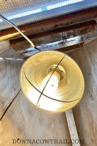 Chicken coop light