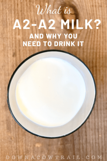What is A2-A2 Milk, and why you need it!