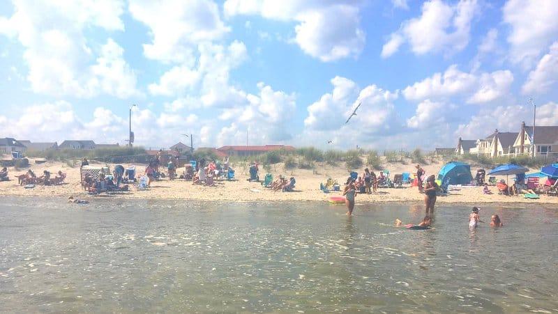 ventnor nj beach dune