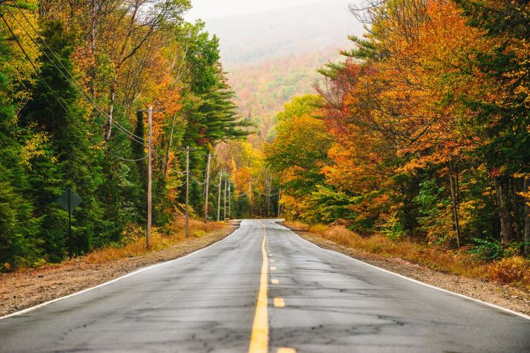 Maine Fall Foliage, Down East Magazine