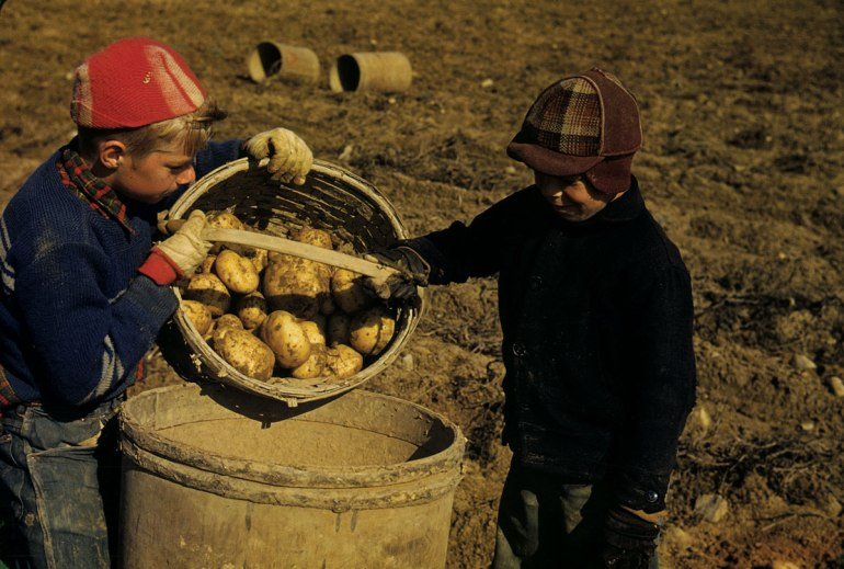Down East Magazine, Small Potatoers