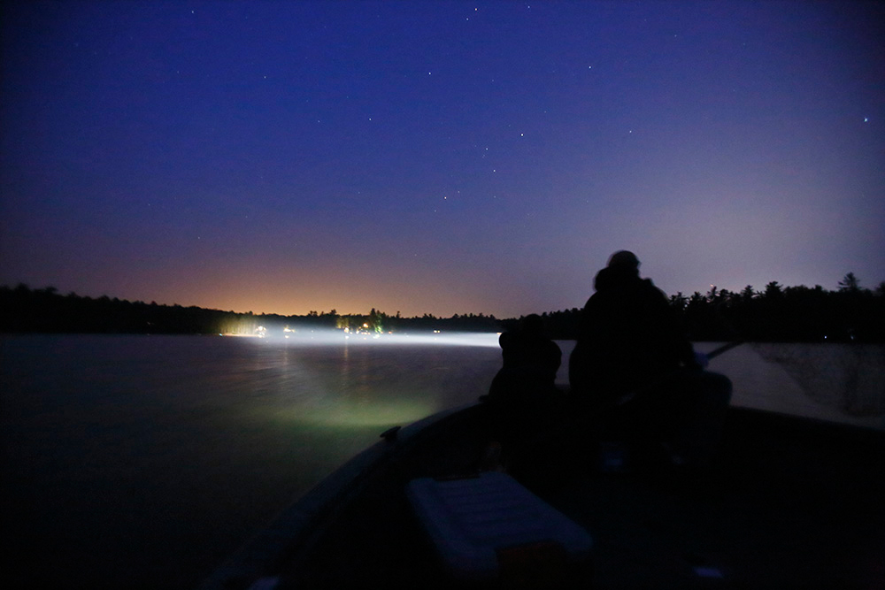 Searching for loons on a Maine lake