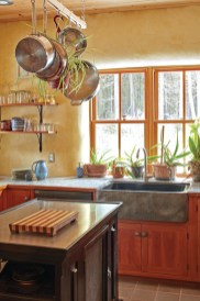 Kitchen with lots of plants