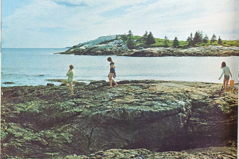 people walking on ocean rocks
