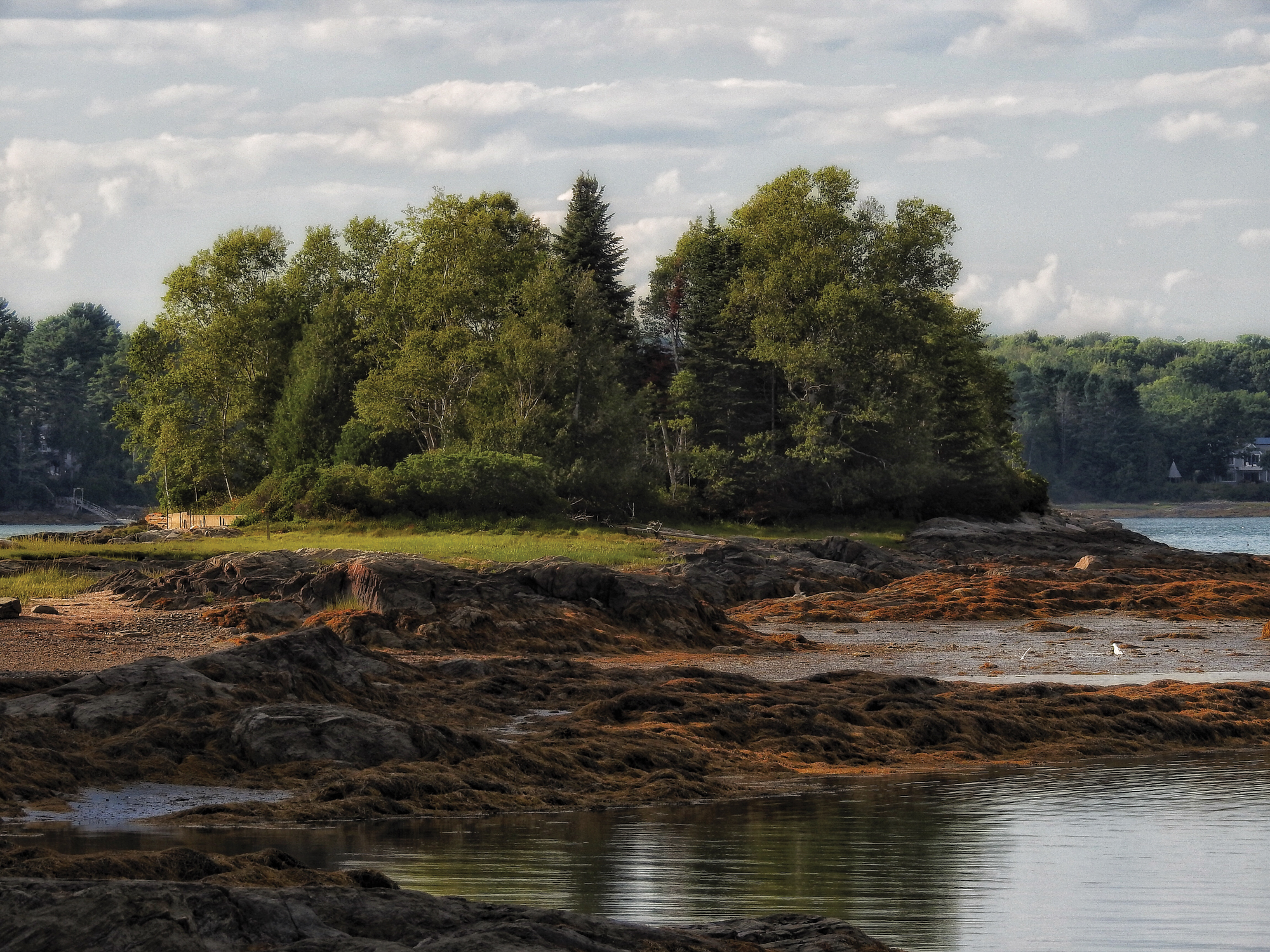 In its later years, kdb's project occasionally mission-creeped into adjacent watersheds. This low-tide shot was taken near Bowdoin College's Schiller Coastal Studies Center, in Harpswell, where researchers examine the effects of climate change on coastal ecosystems.