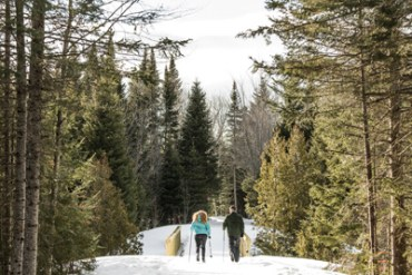 Cross-Country Skiing in Maine