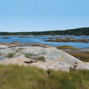 Maine Coast Heritage Trust, The Basin Preserve
