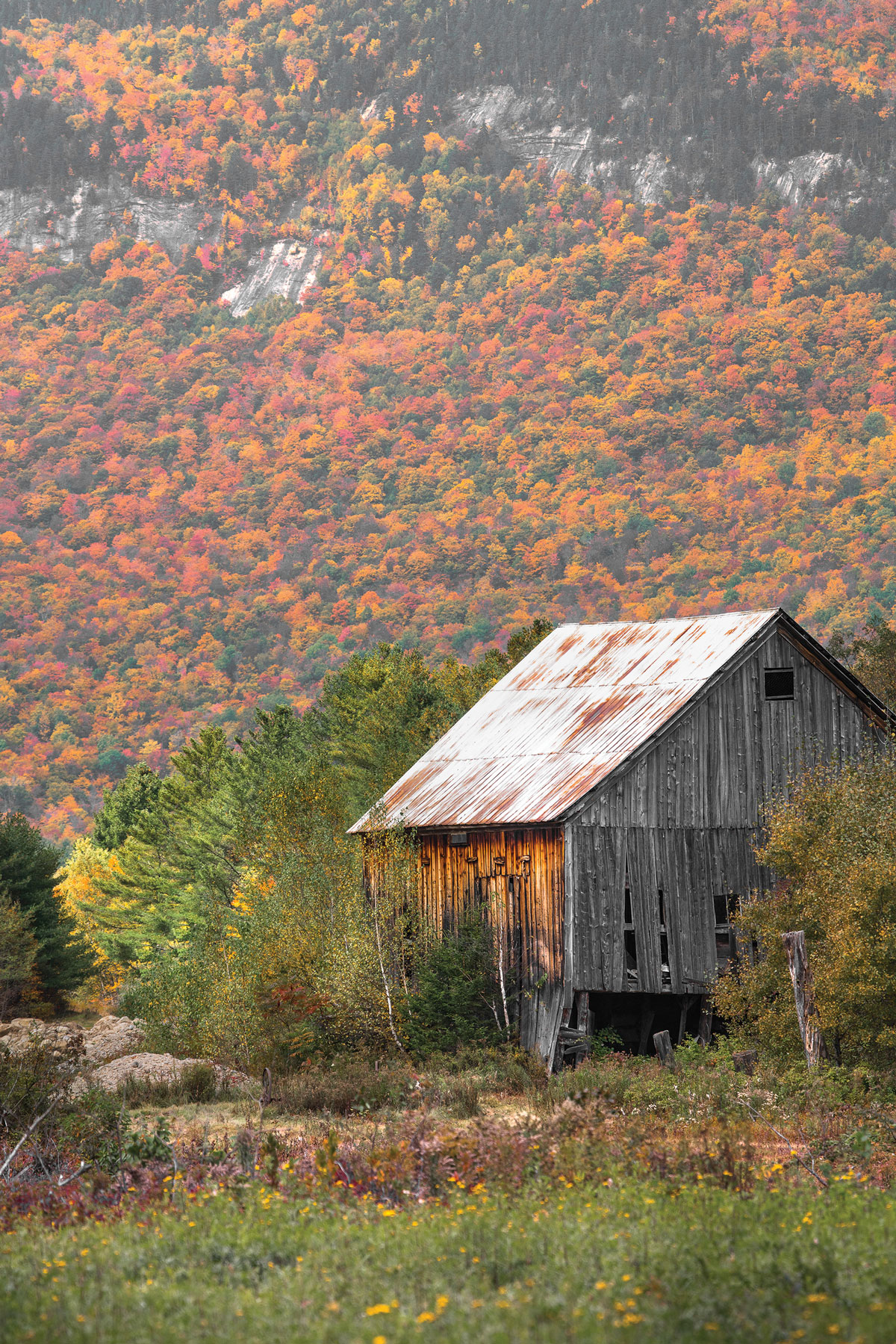 Barn along Bear River Road, just east of Grafton Notch State Park