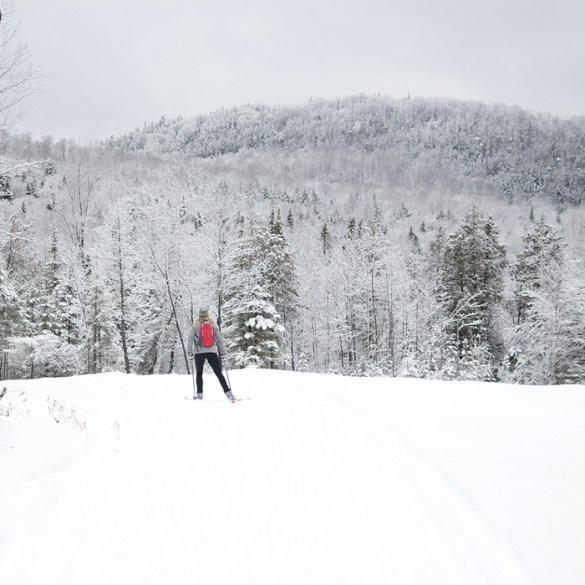 Maine Huts & Trails backcountry skiing