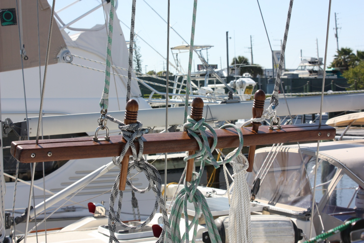 Another Sail Time Story Saffanahs recent trip from Ft