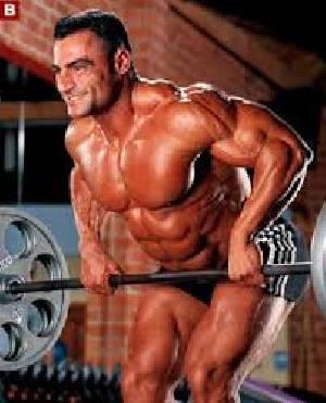 قراءة وتحميل كتاب تمارين كمال الأجسام للمبتدئين عضلات