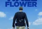 Wallflower (2019)