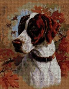 Cross stitch pattern with download instantly in PDF file, to embroider a Pointer dog