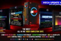 Download Gratis CINEPUNCH Master Suite (Videohive - 20601772)