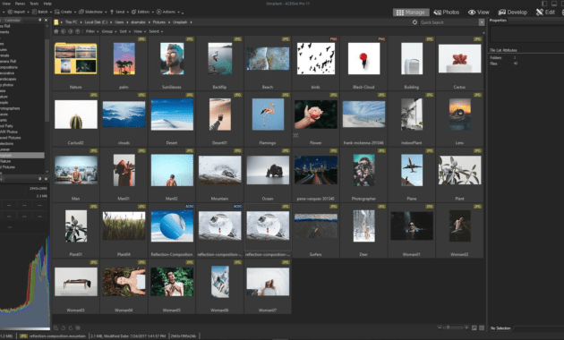 Download Gratis ACDSee Photo Studio Professional 2020 Full Version-2