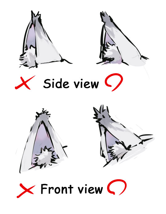 Wolf Ears Drawing : drawing, Lovely, Fluffy!, Animal, Street-, Social, Networking, Posting, Illustrations, Manga
