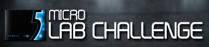 5 Micro Lab Challenge