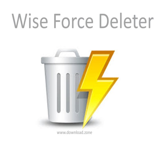 Wise Force Deleter Logo